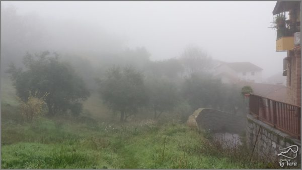 madrigal-de-la-vera-bajo-la-niebla-frog-in-spain50